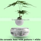 Plastic base bonsai tree figurines live plant floating in the air
