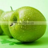 China HACCP Food Safety Consultancy