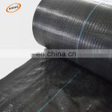 hard pool cover above plastic ground cover mesh mat