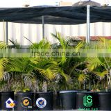 Black Sun Barrier Netting Mesh Shade Sunblock Shade Cloth UV Resistant Net For Garden Flower Plant