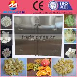 Traditional chinese medicinal materials dryer oven/lucid ganoderma drying box by electric heating