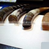 buffalo horn handles for furniture makers, for bicycle handles, for knife handles, for bag handles
