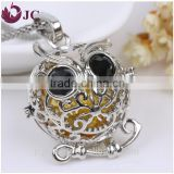 aromatherapy owl essential oil diffuser pendant cage locket necklace