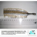 Wholesale frozen seafood-seasoned dried needle fish