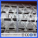 Stock galvanized diamond mesh barbed wire fence lobster and shrimp traps razor barbed wire(Guangzhou Factory)