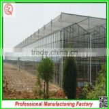 China cheapest Hot-dip galvanized steel structure greenhouses with hydroponic grow systems