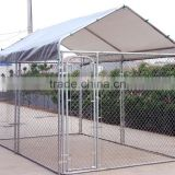 pet shelter, dog kennel , animal shelter