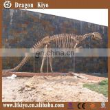 2015 Educational Museum Dinosaur Fossil Replicas Indoor or Outdoor