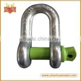 Carbon Steel G210 US Type Forged D Shackle (With color Pin)