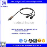 High Quality Auto Oxygen Sensor/ Lambda Sensor 96 09 972 880/96 138 60980/1628 R9/ 250-24184/ 0258003204 for CITROEN/ PEUGEOT