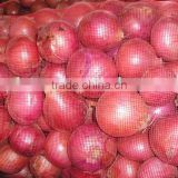 fresh round onions onion price ton onions fresh 20kg lowest price fresh red onion