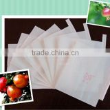 Wholesale Chile High Quality Insect Prevention and Anti-bird Grape Paper Bag For Fruit Growing Protection