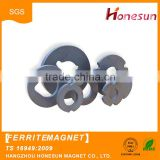 Hot products Strong Rare Earth permanent Ferrites Magnets buy