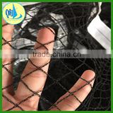 HDPE vinyard to protect grapes bird netting