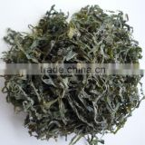 New type of machine dried sea algae cut (dried salted cut kelp)