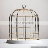 golden shiny metal bird cage
