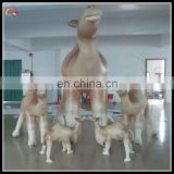 advertising inflatable camel cartoon , inflatable camel model for sale