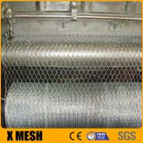 Stainless Steel 1/2
