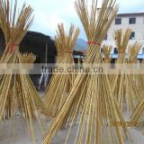 Bamboo Pole at Cheap Price