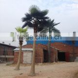 Artificial outdoor coconut palm tree , Fake fiberglass palm tree