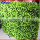 2013 factory Garden Fencing top 1 Garden decoration fence stainless steel wire mesh for garden fence
