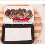 Water-absorbed Packing Plastic Meat Tray