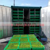 Maize growing system green sprouts fodder making machine/Green Maize Fodder Machine/Green Corn Fodder Machine