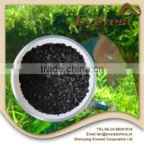 Professionally supply high quality profitability organic fertilizer additive dried sargassum seaweed