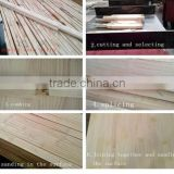 camphor pine glued laminated timber finger joint glulam sawn products
