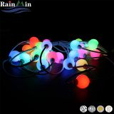 Outdoor&Indoor Decoration 12V RGB Ball Light