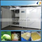 Factory price automatic bean sprout growing machine for sale