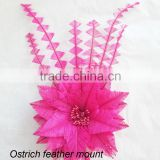 Fuschia ostrich feather flower trimming on hat millinery