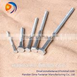 High quality SUS torx screw torx wood screw for wood