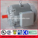 Low voltage IE3 efficiency 3 phase squirrel cage electric motor for pump use