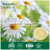 Chinese Hangzhou White Chrysanthemum Extract