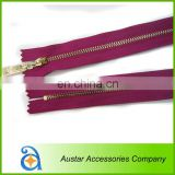Eco-friendly Metal/Brass/Aluminum Zipper for Trousers