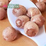 Lotus Seed Lotus Nut Lotus Kernel Dried Red Lotus Seed Brown Lotus Seed with Core Plumule