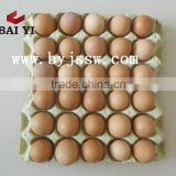 Bulk Egg Carton With Cheap Low Price (Real Factory)
