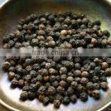 Indian Black Pepper Oleoresin