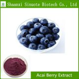 100% Natural Water Soluble Acai Berry Powder