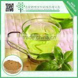 Wholesale products natural green tea extract powder 50%