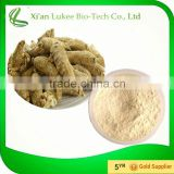 Wholesale American Ginseng Plant Extract