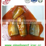 Canned mackerel in tomato sauce or in brine with factory price and high quality