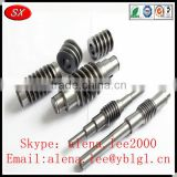 ISO/RoHS passed brass/bronze/stainless steel long worm gear shafts,helical gear shaft,transmission gear and shaft