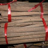 cassia stick cinnamon stick