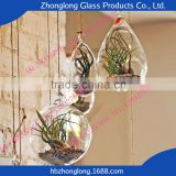 Top Brand Glass Transparent Decoration Handmade Glass Vase