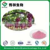 Wholesale Bulk Fresh Grape Fruit Juice Freeze Dried Grape Fruit Powder