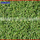 2013 China garden fence top 1 Garden covering hedge decorative window film covering fence