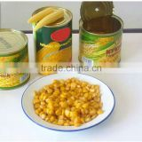Cheap Canned Sweet Kernel Corn Price Best Factory Canned Corn price