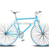 700C lightweight blue color fixed gear bike /utility road bike for adult bike and student bike